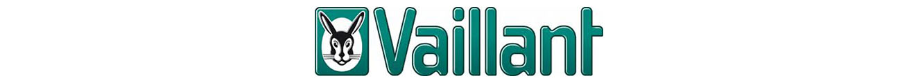 Vaillant Innovative Partner en Asturias